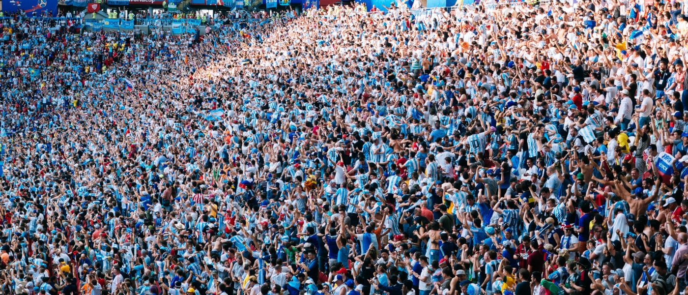 Photo of the crowd during the world cup.